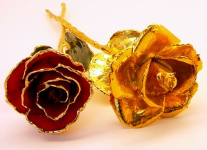 Gold Roses and Lacquer Color Gold Trimmed Rose
